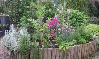 Living Foods Garden