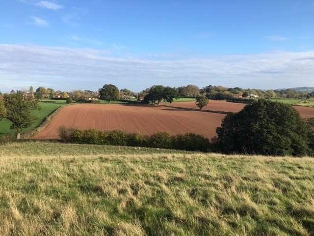Autumn sun over peaceful plough land. From Adam's farm….