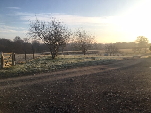 frosty morning on Adam's farm....